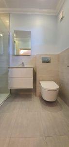 Wall Hung Vanity and Toilet